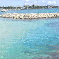 5 Reasons To Visit Peanut Island For Sunday Funday in Palm Beach