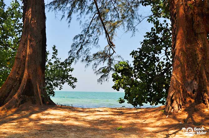 Wonderful view fo the sea with casuarina trees giving shade in the foreground at Koh Chang Noi, Thailand.