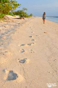 Young woman and footprints on the beach of a tropical island. Photo by Beachmeter.com.