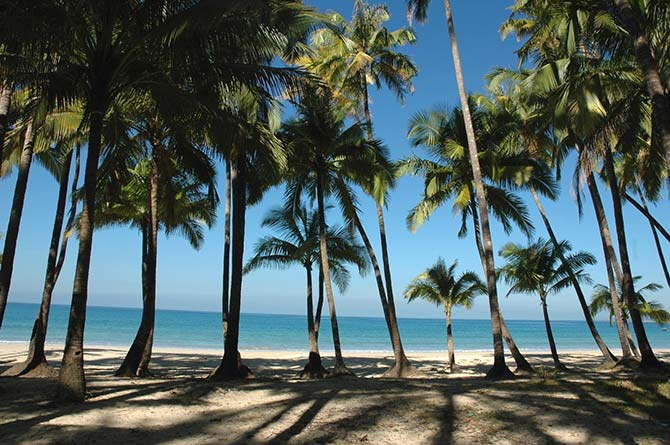 tropical beach with palm trees from Myanmar