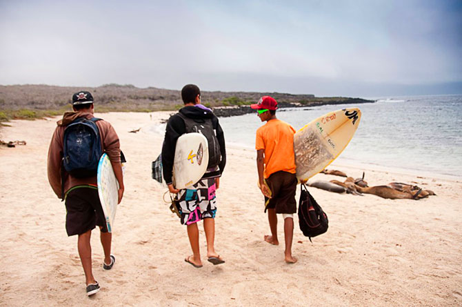 Three surfers and seals on Loveria Beach, Galapagos