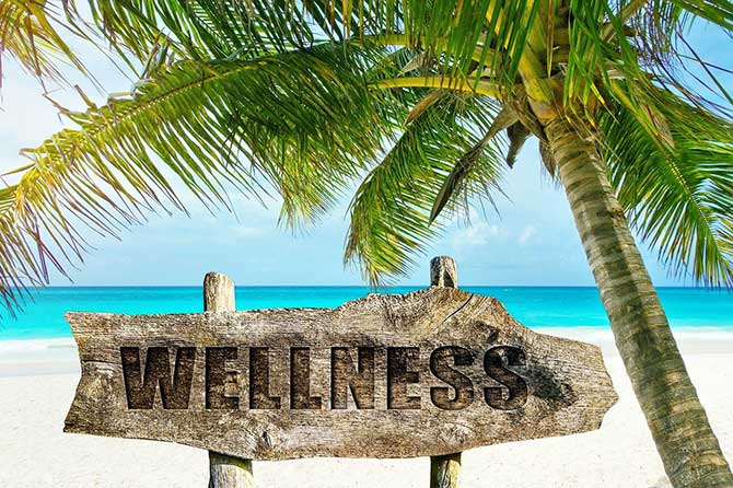 wooden wellness sign on palm beach