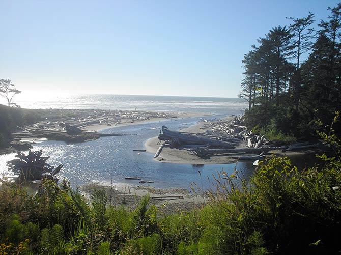Kalaloch Beach Campground, Washington
