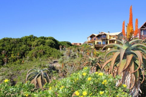 Beach Music, Beachfront Guesthouse, Self-Catering, Jeffreys Bay, South Africa, winter