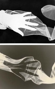 Herbert-Matter-hands-stockings-photograms