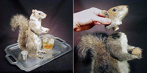 SquirrelDecanter