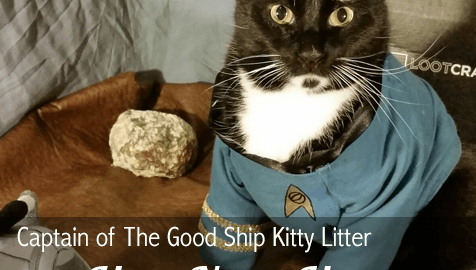 Captain Of The Good Ship Kitty Litter For Next Month You