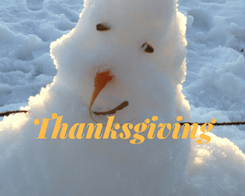 Thanksgiving, Birthdays and Holiday Musings 2017