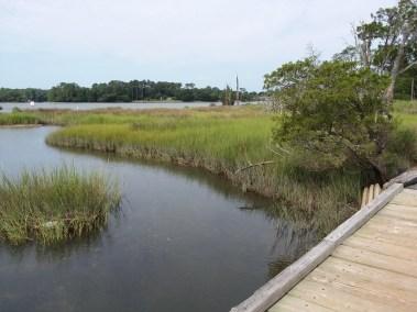Va Beach First Landing State Park (8)