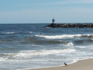 Virginia Beach Vacation House Rentals