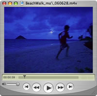 Watch Beach Walks - Roxy is Ma'i