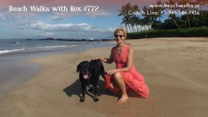 Beachwalk 772 with Rox and Lexi Dogg