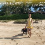 Beach Walk 773 – The Currency of Happiness