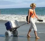 Beach Cart Foldling