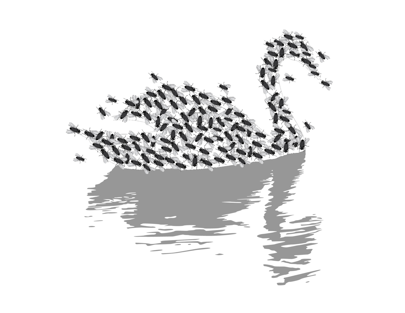 Why Your Company S Big Crisis Won T Be A Black Swan