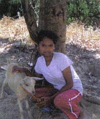 Picture of Rosita