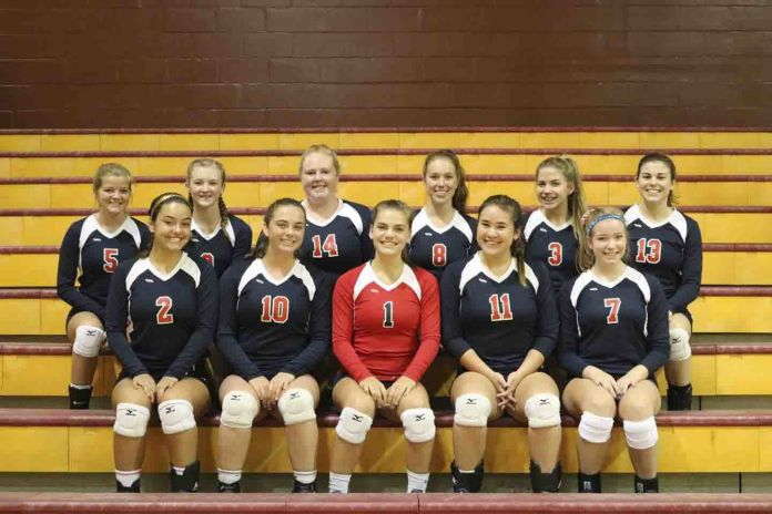 Taylor Ladycat volleyballers head to districts
