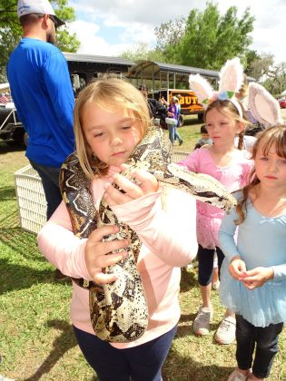 <p><p>Zayla Torres demonstrates how to hold a snake. Or is the snake holding her?</p></p><p></p>