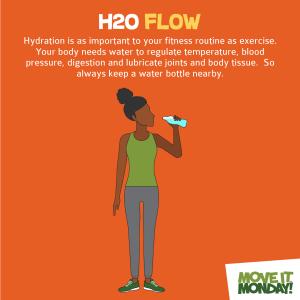 h2o flow