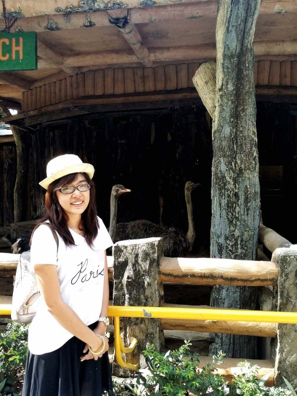 a girl in front of ostriches in avilon zoo