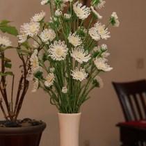 French beaded wild daisy