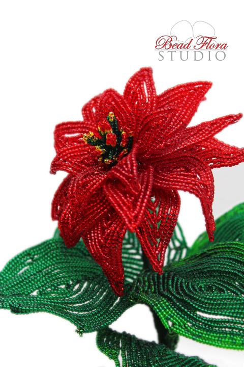 PDF - Winter Rose Poinsettia pattern/tutorial