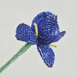 French beaded iris pattern