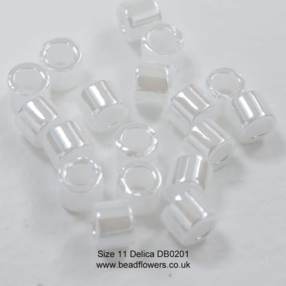 Size 11 Delicas DB0201