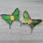 leather luna moth barrette in emerald and olive green
