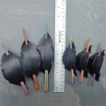 leather crow feather shawl pins and barrettes with striped wood sticks