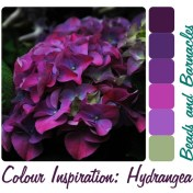 Colour Inspiration - Hydrangea