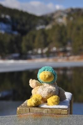 Guck at the Mountain Lake