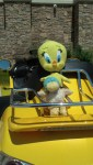 Guck Rides With Tweety