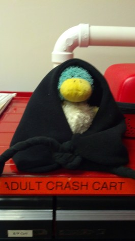 Crash Cart Guck