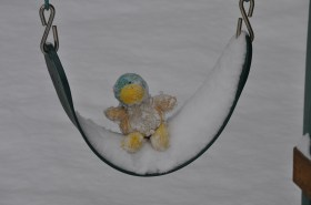 Freezing Guck In A Swing