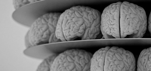 How to Be Addictive: Brain Science for Bloggers