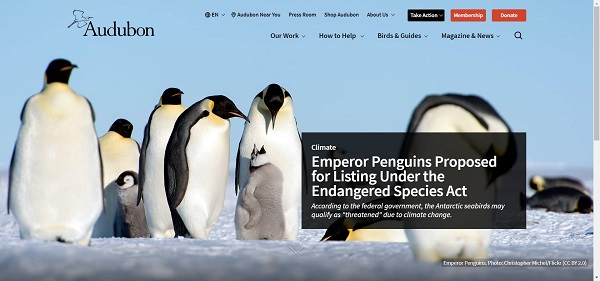Audubon magazine pays freelance writers for science writing jobs