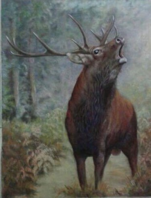 stag pastel
