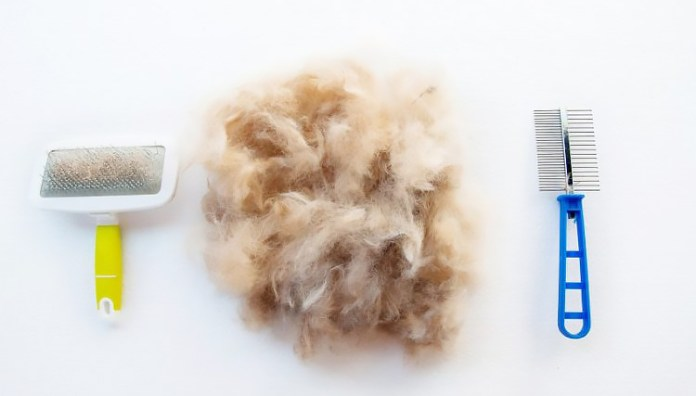 7 Effective Tips To Reduce Shedding