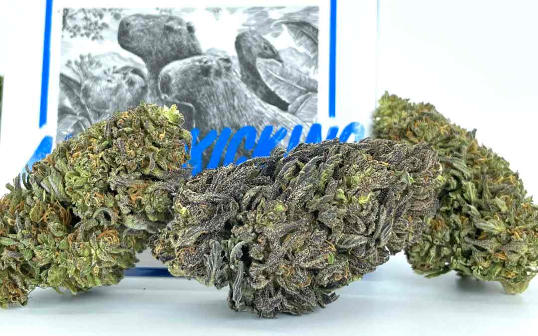 What Exactly is Hemp CBG Flower and Why You'll Love Smoking It