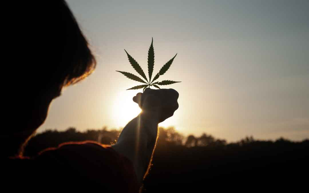 Weed Terms You Should Know