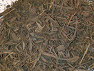 triple-shredded-mulch