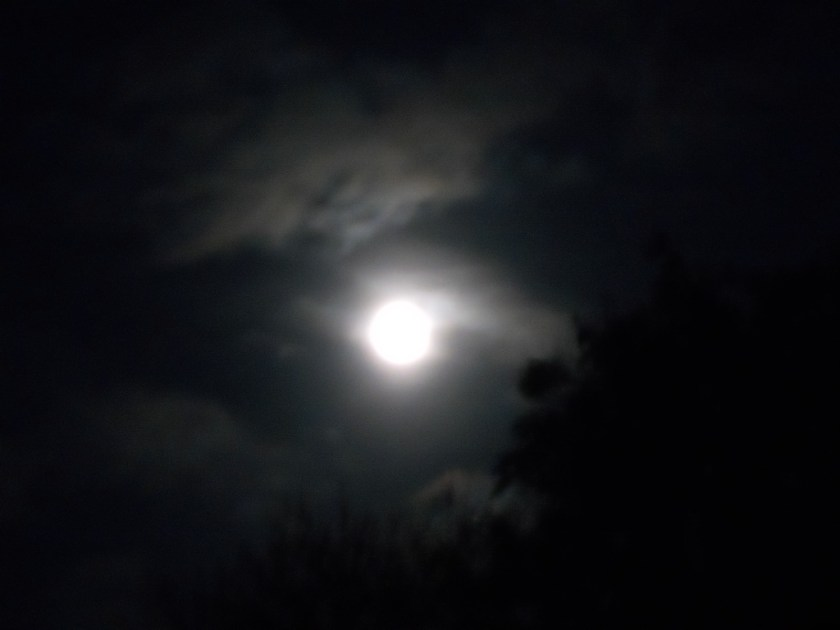 full moon 21 oct 10 007