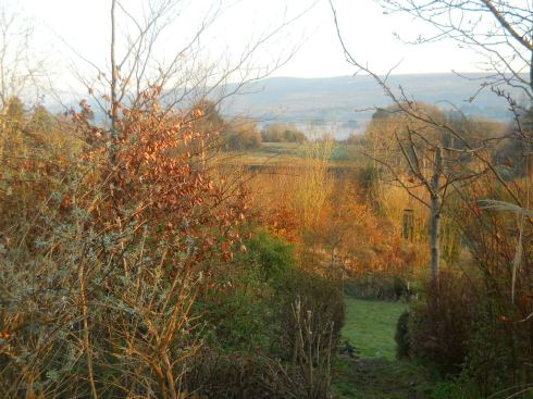 Bealtaine Cottage March 2012