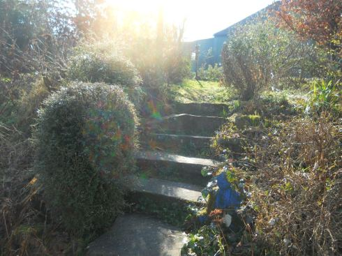 Bealtaine Cottage steps down into the garden