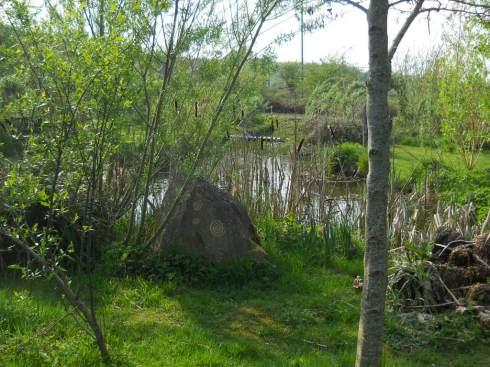 April  Bealtaine Cottage pond garden