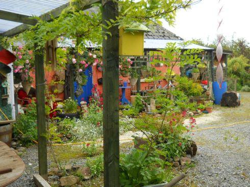 Bird box and verandas at Bealtaine Cottage 026