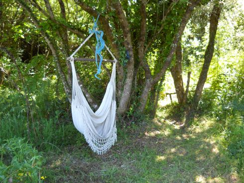 Hammock in the Fairy wood at bealtaine Cottage Permaculture gardens