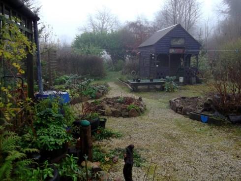 Midwinter mist at Bealtaine Cottage