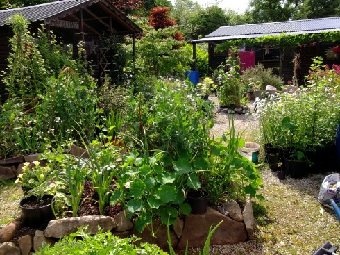 courtyard at Bealtaine Cottage